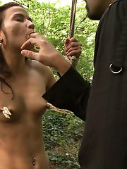 Outdoor Bdsm Public Sex